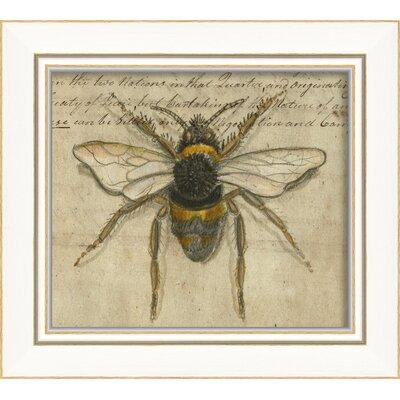 The Artwork Factory Bumble Bee Framed Graphic Art 86494