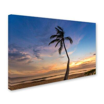 "Trademark Art ""Sunset Palm Tree"" by Pierre Leclerc Photog..."
