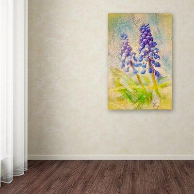 Trademark Art 'Nostalgic Grape Hyacinth' Print on Wrapped...