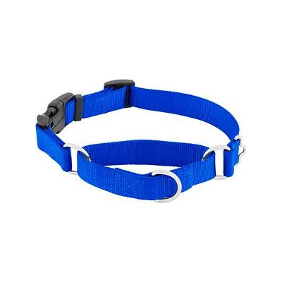 "Frisco Solid Martingale Dog Collar with Buckle, Blue, Medium; The Frisco Solid Martingale Dog Collar with Buckle is easy to put on and take off your pup with the convenient side-release buckle. It is a perfect solution for the ""Houdini"" canines that..."