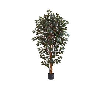 Nearly Natural Green 6-Foot Capensia Ficus Tree