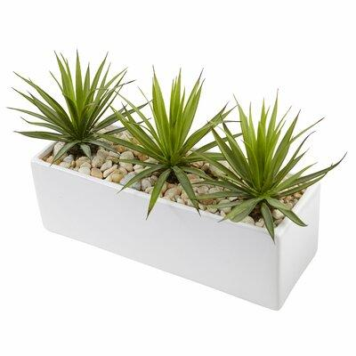 Orren Ellis Artificial Mini Agave Desktop Succulent in Ba...
