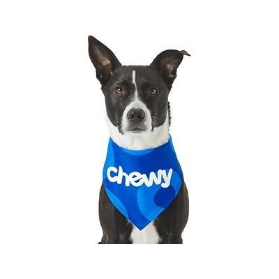 Frisco Chewy Dog & Cat Bandana, Medium/Large