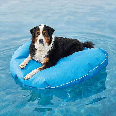 """Dog Pool Float and Lounger - Kentucky Blue, Small: 30"""" dia. - Frontgate"""