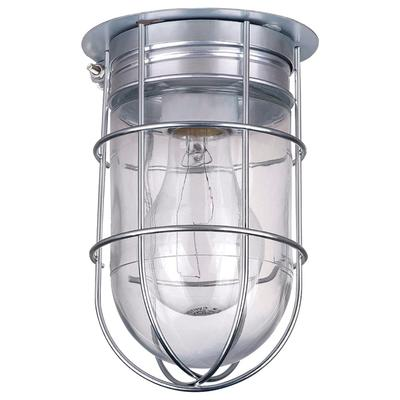 Canarm Ceiling/Wall Outdoor/Indoor Barn Light with Cage - 4.5 Inch Diameter, 100 Watts, Model BL04CWG